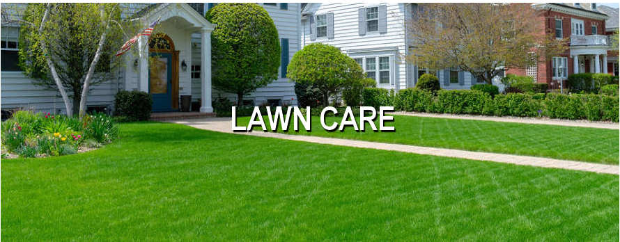 Landscaping | Lawn Care | Snow Plowing | Residential | Commercial | Chicago | Southwestern Michigan | Northern Indiana